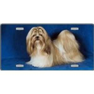 Shih Tzu Dog Pet Novelty License Plates Full Color Photography License