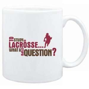 New  To Study Or Lacrosse  What A Stupid Question