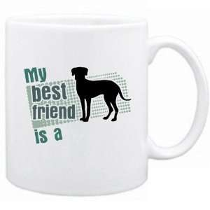 My Best Friend Is A Catahoula Leopard Dog  Mug Dog